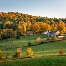 Royal LePage TEAM REALTY Tip Series: 6 Tips For Buying Rural in Ottawa