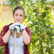 Avoiding Backyard Blunders: 5 Things to Know About A Property Before You Buy